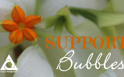 Support Bubbles